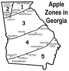 home garden apples uga cooperative extension