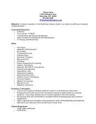 lvn resume template lvn resume template vasgroup co
