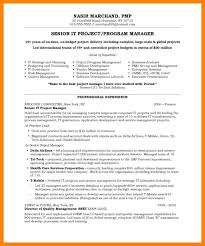 Project Manager Resume Template It Project Manager Resume Template Ideas Resumes For Project