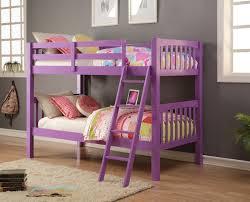 Purple Bunk Beds Violet Purple Bunk Bed Bunk Bed Room And Rooms