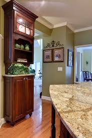 Olive Green Kitchen Cabinets Kitchen Photos Olive Green Neutral Wall Color Design Pictures