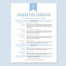 Business Resumes Templates The 25 Best High Resume Template Ideas On Pinterest