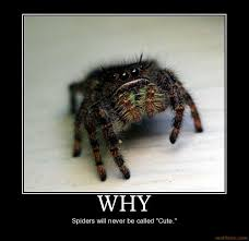 Cute Spider Meme - demotivational poster the float is ready let the christmas parade