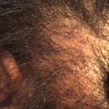 sasha best braids african hair braiding 16 photos hair