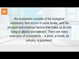 what is an example of an ecosystem in biology youtube