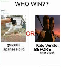 Japanese Memes - fbicuratorof memes who win see translation or graceful kate
