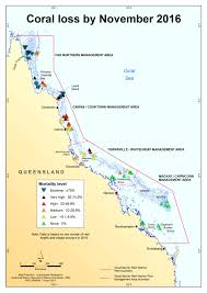 Map Of Coral Reefs 2016 Coral Bleaching Event Gbrmpa