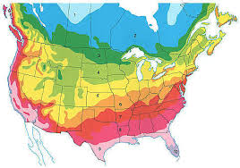 Gardening Zones - 100 flower zones map oregon native plant provisional seed