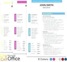 executive resume templates word fancy resume templates skywaitress co