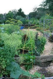 Gardening Tips For Summer - organic gardening tips grow so easy organic