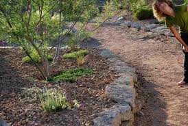 Desert Landscape Ideas For Backyards Landscaping Ideas Backyard Desert Pdf
