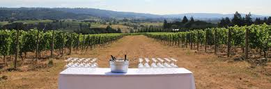 Oregon Ava Map by Ayres Vineyard Ribbon Ridge Wine Pinot Noir Pinot Noir Wine
