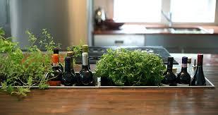 Herb Window Box Indoor 18 Creative Ideas To Grow Fresh Herbs Indoors