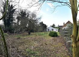 bungalow for sale in swanley robinson jackson
