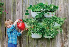 amazon com living wall planter recycled plastic self watering