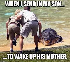 Funny Wife Memes - my wife is not a morning person when i send in my son to