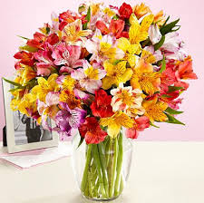 cheap flowers delivered cheap flower delivery 20