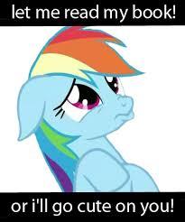 Rainbow Dash Meme - rainbow dash meme by eclipseponyart on deviantart