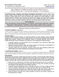 Resume Sample Executive by 28 Award Winning Resume Templates Free Resume Templates Award