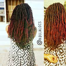 stages of dreadlocks pictures decoding loc maintenance part 2 6 loc stages and loc care naibac