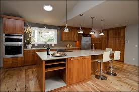 kitchen ash kitchen cabinets slab cabinet doors cabinet with