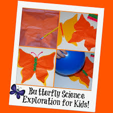 butterfly craft and science exploration for kids wikki stix