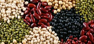 legumes essential for a healthy diet health coomeva magazine