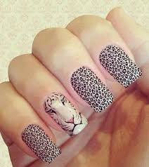 Nail Designs Cheetah Pictures Of Tiger Cheetah Nail Nail Cheetah