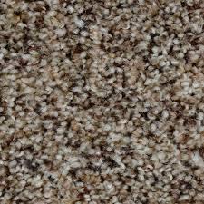 home decorators collection carpet sample grayson color medina