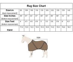 Rug Measurement Cozy Horse Rug Patterns Innovation Rug Ideas