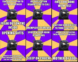 Anxiety Cat Memes - sunday randomness anxiety cat anxiety cat meme and random