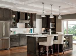 Kitchen Cabinet Replacement Hinges Kitchen Pretty Kitchen Decor With Aristokraft Cabinetry Design