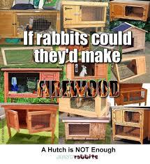 Best Rabbit Hutches Rabbit Hutches Reviews Plans U0026 Hutch Directory