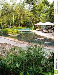 ecotourism resort swimming pool landscaping stock images image