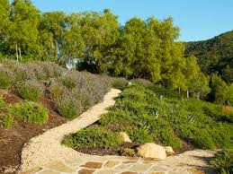Backyard Hillside Landscaping Ideas Garden Landscape Ideas For Your Inclined Garden And Yard