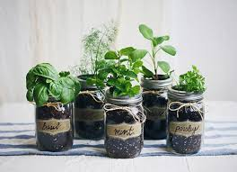 Indoor Herb Garden Ideas by 18 Creative And Easy Diy Indoor Herb Garden Ideas Interior