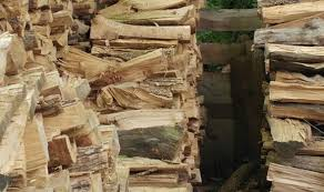 picture of a pile of logs goes viral after internet notices this