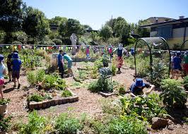 Ideas For School Gardens Wonderful Edible School Gardens Along With School Garden