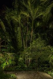 73 best landscape lighting images on pinterest landscape