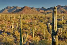Arizona natural attractions images 10 top tourist attractions in arizona with photos map touropia jpg
