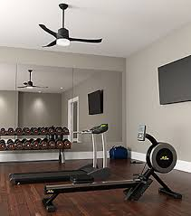gym fans for sale stylish ceiling fans for every room hunter fan company