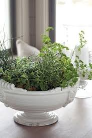 Kitchen Herb Garden Design 32 Best Indoor Herb Gardens Images On Pinterest Indoor Herbs