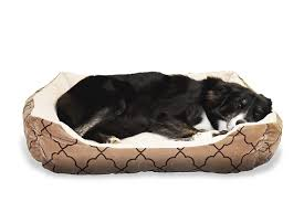 tough dog beds best chew resistant dog beds 15 amazing tough pet beds for