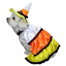 Dog Minion Halloween Costumes 45 Images Halloween Dog Costumes