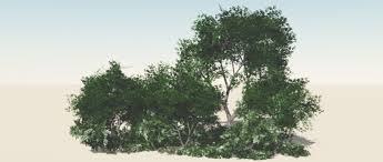 vue custom trees visual fx animation 3d vfxforge