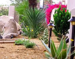 chic desert garden design how to create desert landscape design