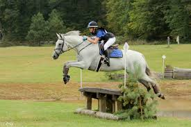 ali smallpage eventing nation three day eventing news results