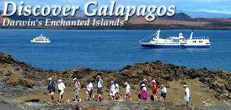 galapagos family vacation discovergalapagos