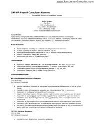 sample security consultant resume senior consultant resume