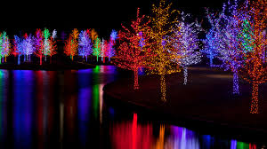 Phoenix Zoo Christmas Lights by Making Spirits Extra Bright Where To Catch The Country U0027s Best